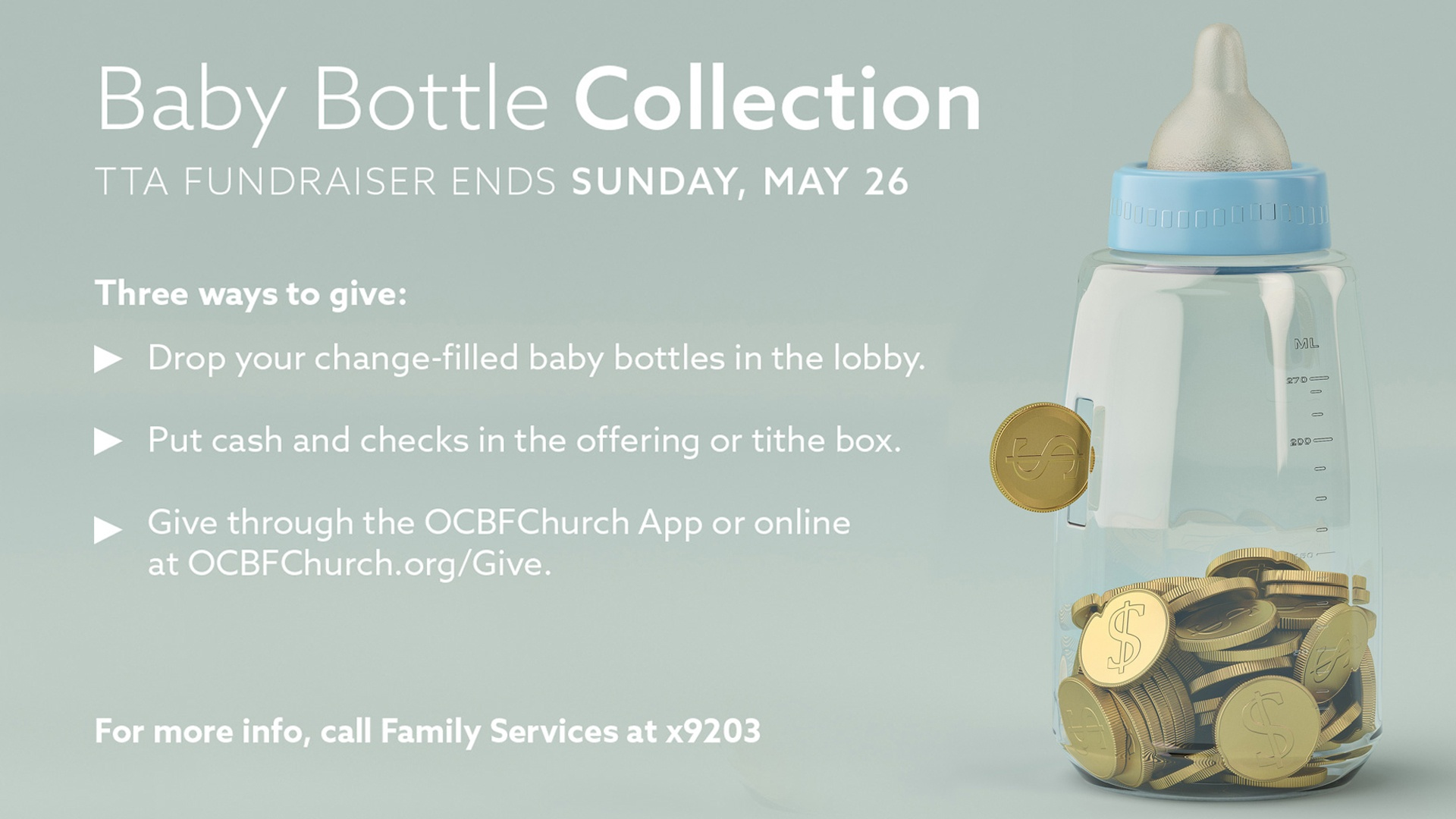 Baby Bottle Collection - TTA fundraiser