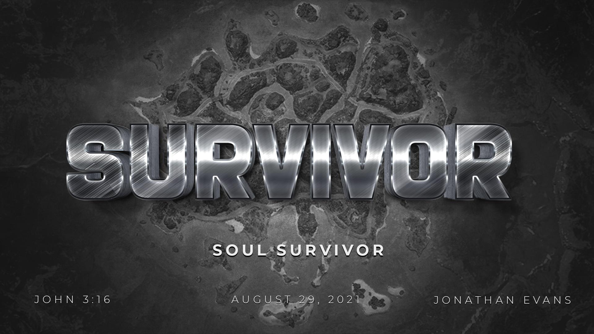 Survivor: Soul Survivor by Jonathan Evans