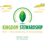 The Meaning of Stewardship